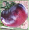 Amethyst Jewel (type beefsteak)